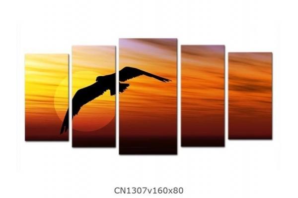 Obraz Letící pták